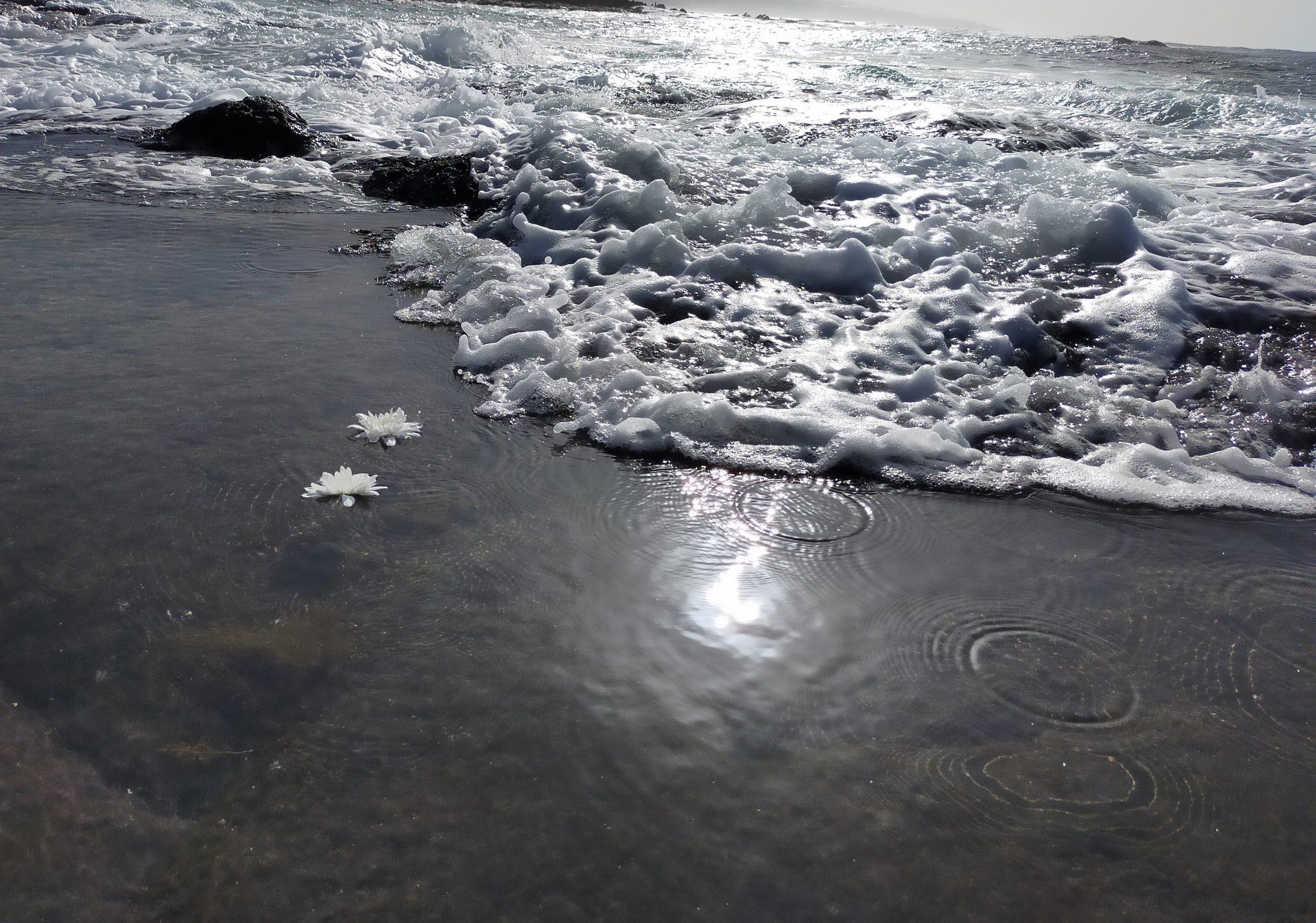Sentir del mar